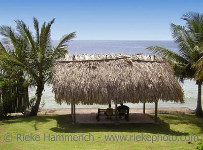 beach hut between palm trees - tobago, west indies