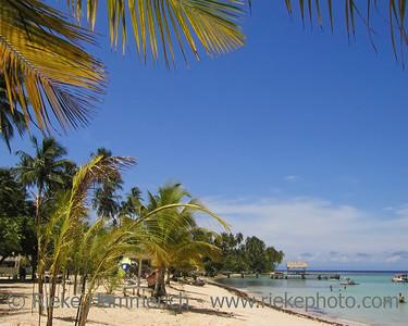 tropical beach - pigeon point, tobago, west indies