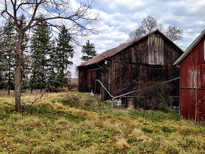 Abandoned Farm at Wetmore Trail Head