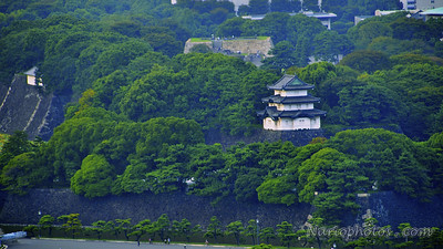 Japanese Imperial Gardens, Tokyo, Japan