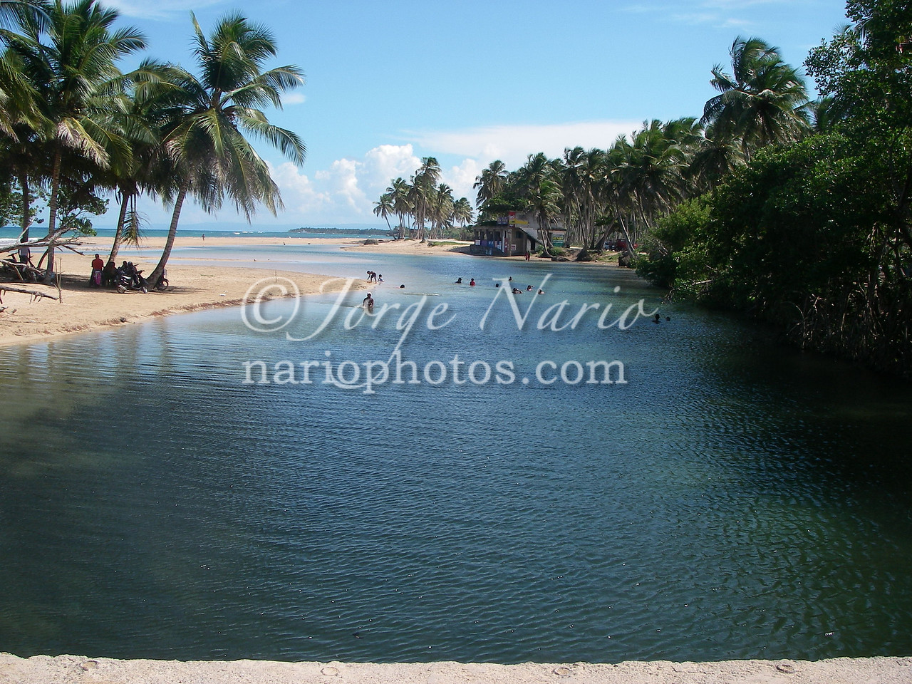<b><font color=red>OK now check this out...</font></b> this beach is an estuary (where a river joins the sea). One side of the beach faces the ocean, is lined by palm trees, has waves, fine sand and the other side is the darker, cooler water of a river, lined by trees and strong currents. This is shot of where the river joins the ocean is taken from the river side.