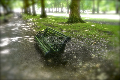 The Bench (Royal Gardens in London)