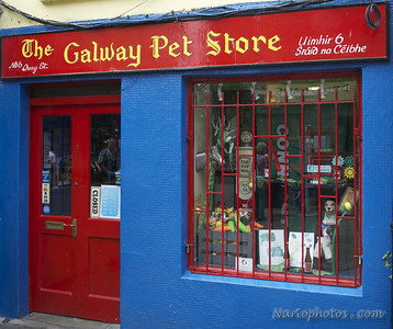 Galway & Dublin Ireland photo shoot DSC_9352