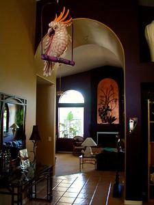 Darlene's Foyer