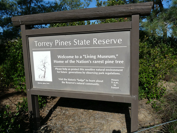 Torrey Pines State Resesrve