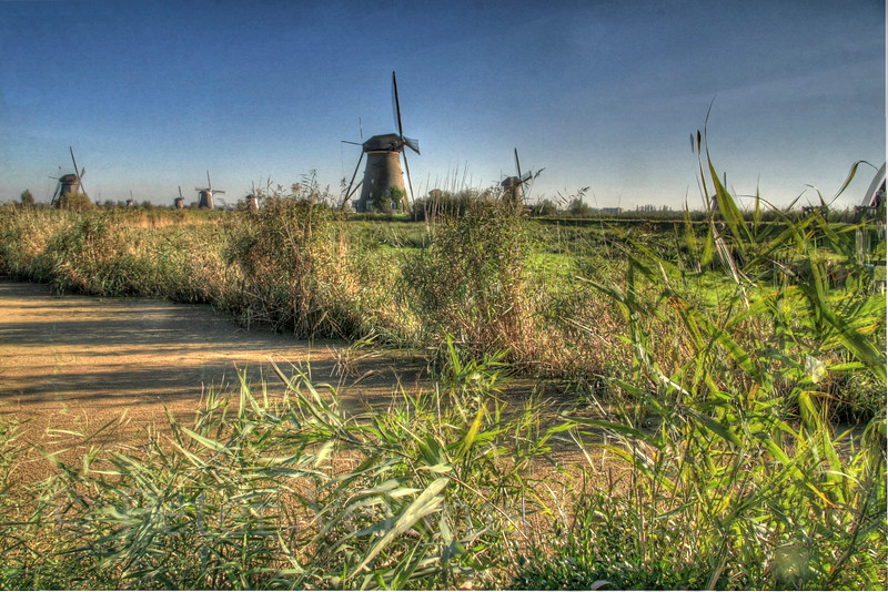 The windmills of Kinderkijk, Netherlands