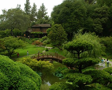 Huntington - The Japanese and Zen Gardens