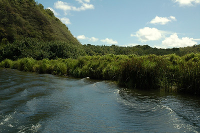 Wailua River, Fern Grotto