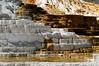 2009 NP Trip - Yellowstone/Teton