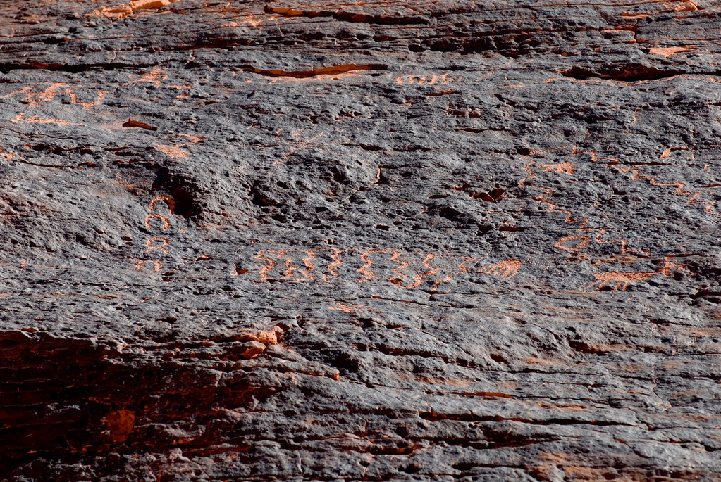 Valley of Fire  Petroglyphs -  These were some of the smaller detailed carvings found in the canyon.