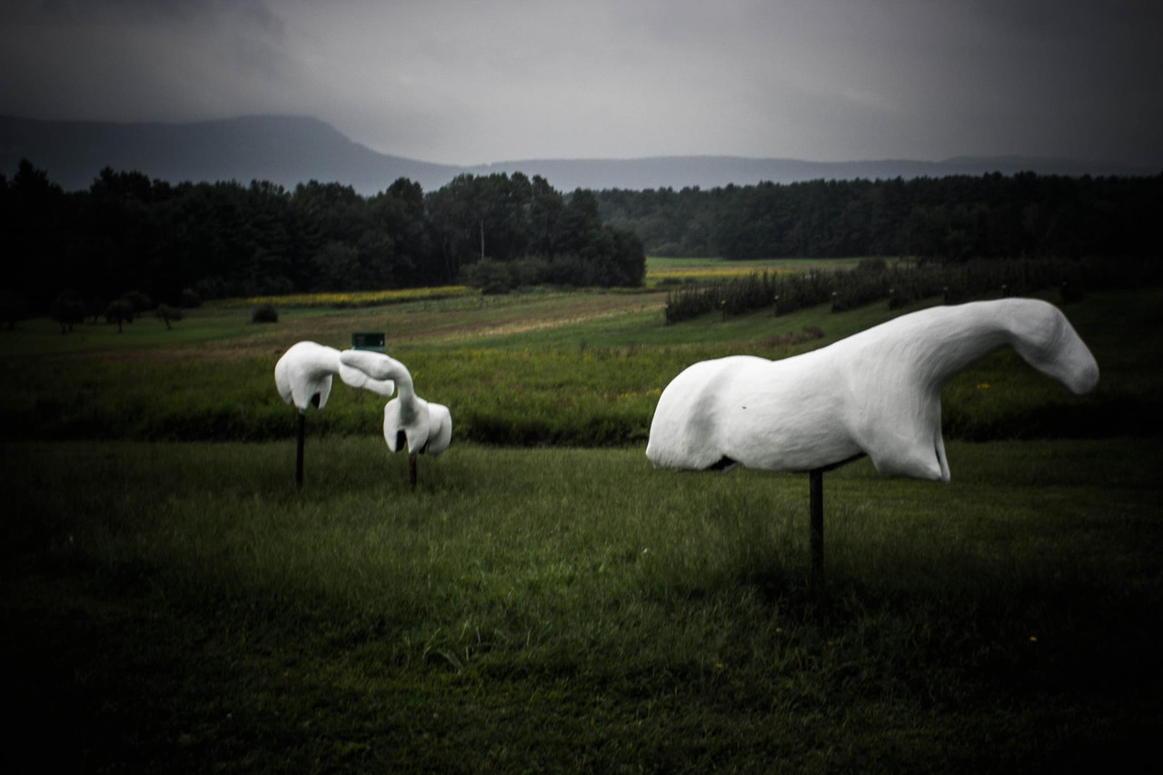 Art in the Orchard, Easthampton MA.