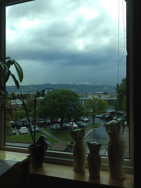 View from my office at BiosPacific