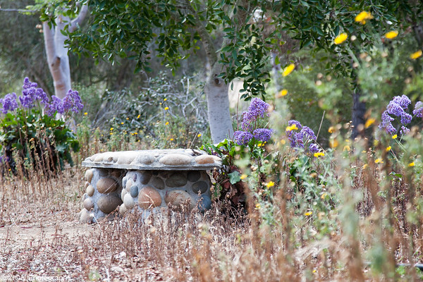 A bench of solitude at a Monastary.