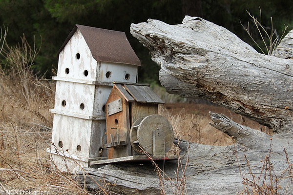 Bird houses sit by a log at the entrance to the Prince of Peace Abby Monastary in Oceanside, California