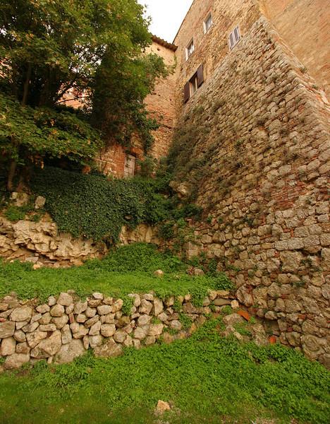 Ivy walls, Montepulciano