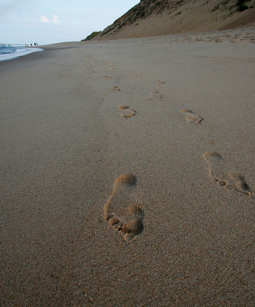 Footprints, Cape Cod