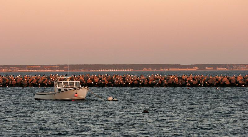 Provincetown Harbor, Cape Cod