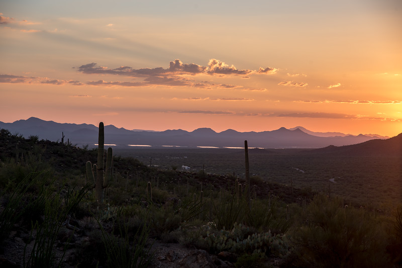 tucson sunset-25.jpg