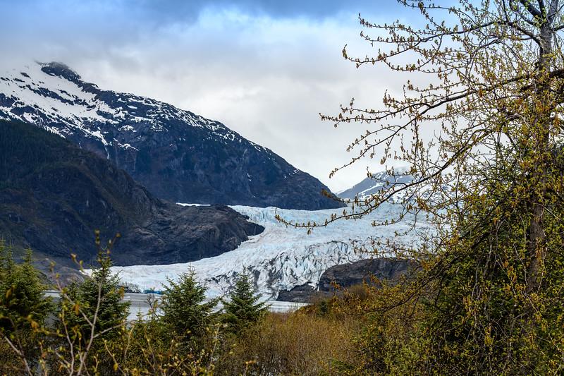 day 6 endicott arm and dawes glacier-255.jpg