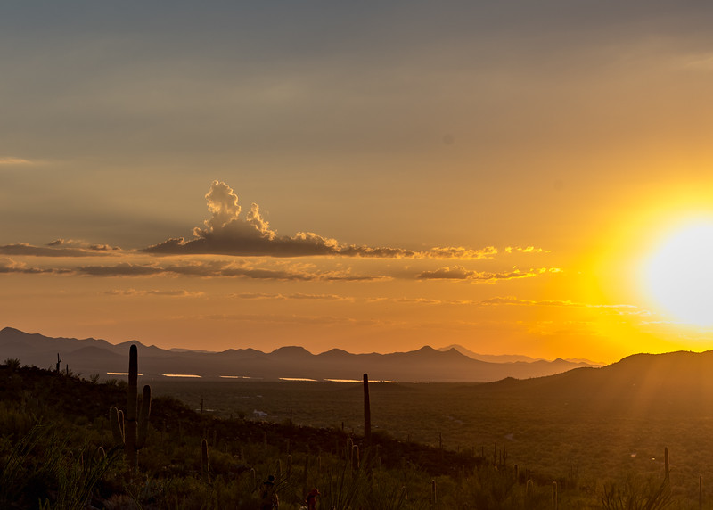 tucson sunset-10.jpg