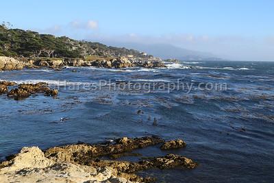 Monterey - Carmel CA-8819