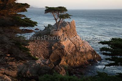 Monterey - Carmel CA-8837