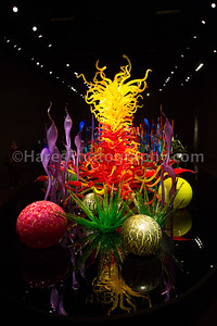 Chihuly - Seattle-1567
