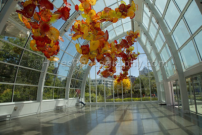 Chihuly - Seattle-1589
