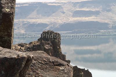 Columbia River-7507