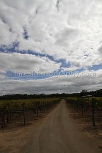 California Coast-Wineries-9901