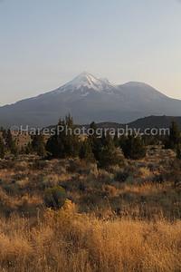 Mount Shasta-8830