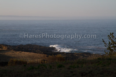 California Coast-Wineries-9556