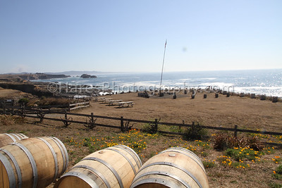 California Coast-Wineries-9460