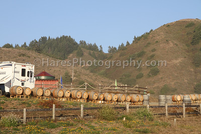 California Coast-Wineries-9496