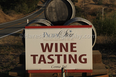 California Coast-Wineries-9503