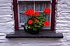 Irish Window 3