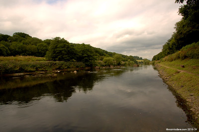 River Wye close to Redbrook 007 (August 2015)