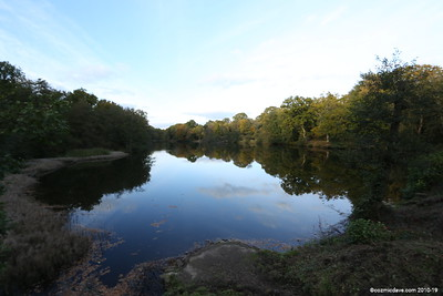 Cannop Pond (next to marble factory)