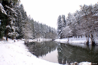 Winter at Soudley Ponds