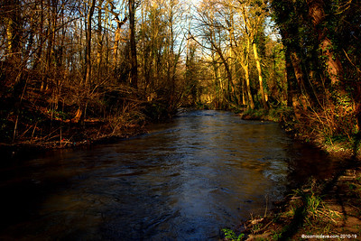 River Frome 001