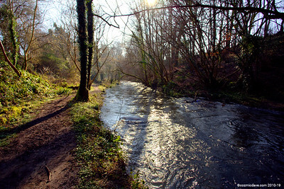 River Frome 013
