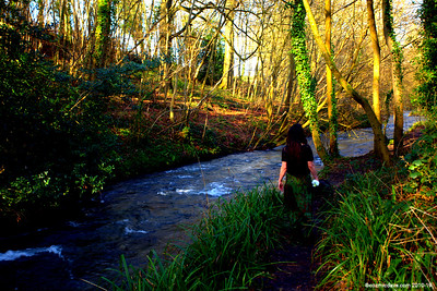 River Frome 008