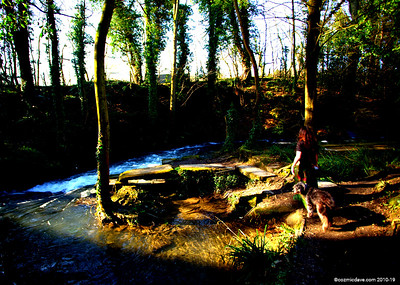 River Frome 003
