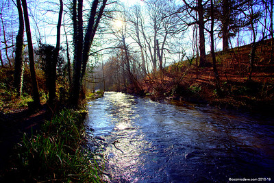 River Frome 010