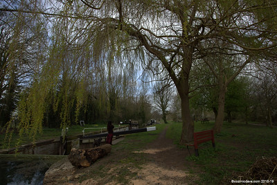 Along the Cotswold Canal 001