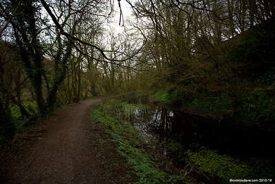 Along the Cotswold Canal 002