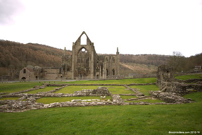 Tintern Abbey 004