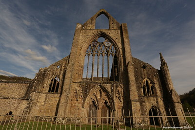 Tintern Abbey 017