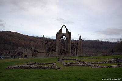 Tintern Abbey 005