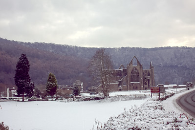Tintern Abbey 014